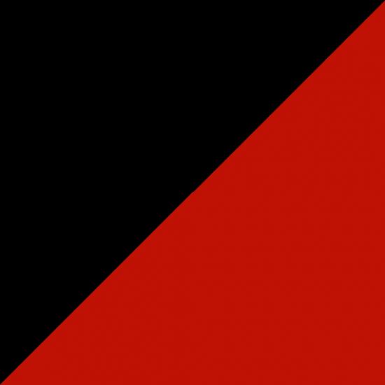 DANCE FLOOR DUO 200 - BLACK|RED